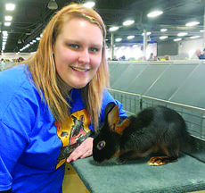 """<div class=""""source""""></div><div class=""""image-desc"""">Michaela Rock won first and second with her two Black Senior Buck Tans at the Tan Nationals on April 13 in Louisville. There were 16 rabbits in the Senior Buck class. On April 14, she won Best Opposite Sex of Breed with her Black Senior Buck Tan at the Kentucky Cup Show in Louisville. There were 65 Tans. </div><div class=""""buy-pic""""><a href=""""http://web2.lcni5.com/cgi-bin/c2newbuyphoto.cgi?pub=029&orig=4H%2BMRock.jpg"""" target=""""_new"""">Buy this photo</a></div>"""