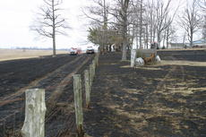 "<div class=""source"">Linda Ireland</div><div class=""image-desc"">Several fence posts caught fire as the flames crossed into residential yards.</div><div class=""buy-pic""><a href=""/photo_select/13355"">Buy this photo</a></div>"