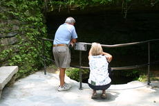 """<div class=""""source"""">Linda Ireland</div><div class=""""image-desc"""">The Sinking Spring area at Abraham Lincoln Birthplace National Historic Park was re-opened to the public after workers restored the flagstones leading to the area. The crew took great care in maintaining the historic appearance of the site, most likely the spot where young Lincoln took his first drink of water.   </div><div class=""""buy-pic""""><a href=""""/photo_select/14902"""">Buy this photo</a></div>"""