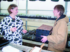 """<div class=""""source"""">Ron Benningfield</div><div class=""""image-desc"""">LCHS student Reed Hoefer helps ag teacher Misty Bivens with some transplanting chores.</div><div class=""""buy-pic""""><a href=""""/photo_select/3668"""">Buy this photo</a></div>"""