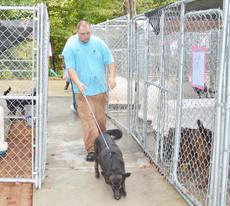 """<div class=""""source"""">Calen McKinney</div><div class=""""image-desc"""">Animal control officer Danny Allen walks a dog at the Taylor County Animal Shelter.</div><div class=""""buy-pic""""><a href=""""/photo_select/23322"""">Buy this photo</a></div>"""