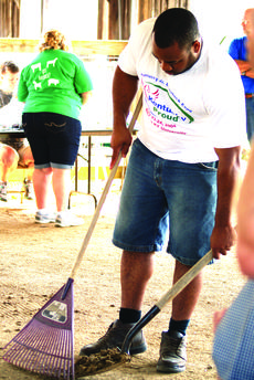 """<div class=""""source"""">Photo by Linda Ireland</div><div class=""""image-desc"""">Chris Thomas, the new agriculture teacher at LaRue County High School, helped out at the LaRue County Fair Dairy Show in a dirty, but necessary task –  shoveling the ring.  </div><div class=""""buy-pic""""><a href=""""/photo_select/29132"""">Buy this photo</a></div>"""