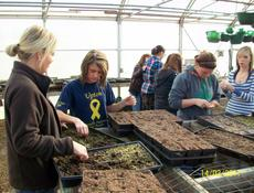 """<div class=""""source""""></div><div class=""""image-desc"""">From left, Jamie Price, Brittney Corbin, Brittany Enlow and Felicia Kahill transplant young flowers into individual compartments.  </div><div class=""""buy-pic""""><a href=""""/photo_select/13228"""">Buy this photo</a></div>"""