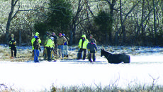 """<div class=""""source"""">Photo by Debra Ramey</div><div class=""""image-desc"""">Volunteer firefighters and Sheriff Merle Edlin tried to coax a horse out of a frozen pond on Campbellsville Road.</div><div class=""""buy-pic""""><a href=""""http://web2.lcni5.com/cgi-bin/c2newbuyphoto.cgi?pub=029&orig=horse_in_pond.jpg"""" target=""""_new"""">Buy this photo</a></div>"""