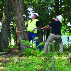 """<div class=""""source"""">Linda Ireland</div><div class=""""image-desc"""">A dead tree in Little Mount Cemetery became a challenge to workers Wednesday morning. Andy Patterson, Nolin RECC, tugs on a rope, trying to ease the tree to the ground, as J.J. Brown, Asplundh, watches its progress through other trees.</div><div class=""""buy-pic""""><a href=""""/photo_select/36722"""">Buy this photo</a></div>"""