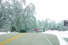 """<div class=""""source"""">Linda Ireland</div><div class=""""image-desc"""">The grounds at the Abraham Lincoln Birthplace National Historic Site looked """"like a war zone"""" after the ice storm, according to a park employee. The park is without power and closed to visitors.</div><div class=""""buy-pic""""><a href=""""/photo_select/7609"""">Buy this photo</a></div>"""