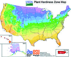 """<div class=""""source""""></div><div class=""""image-desc"""">The U.S. Department of Agriculture has updated its Plant Hardiness Zone Map.</div><div class=""""buy-pic""""><a href=""""/photo_select/19116"""">Buy this photo</a></div>"""