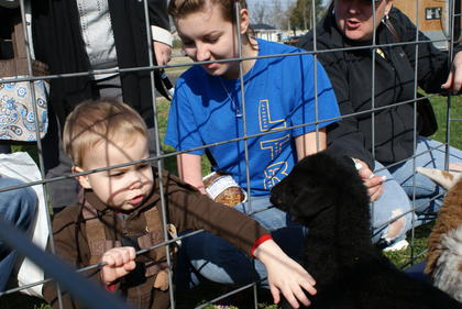 Jonas Lamb enjoyed petting a black lamb at the LaRue County Goat and Sheep Producers booth.