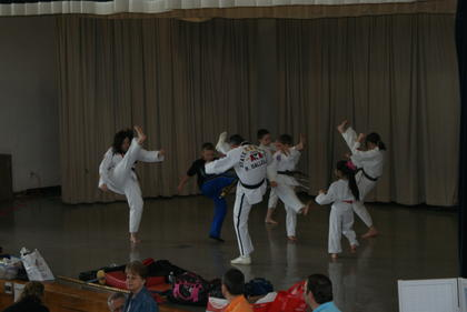 Sallee's Family Taekwondo demonstration