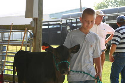 Russell Young, Youth Dairy Show