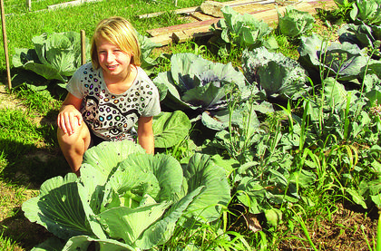 Casey Gibson, a third-grader at Abraham Lincoln Elementary School, grew this cabbage plant. The seedling was given to her at school last spring.