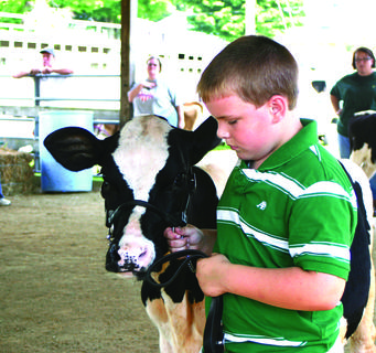 Austin Hood of Somerset won his division with his holstein calf. He's the son of Allen and Amanda Hood.