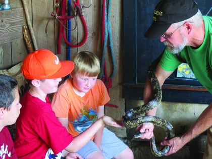 Kaden Burd, Patrick Butterworth, and Thomas Ronkainen take a close look at a black rat snake that Bob Ernst is holding. The children were attending Earth Camp at Plowshares Farm.