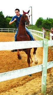 Isac Baumgardner rode First Round Picked in the three-gaited class at the horse show.