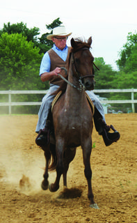 John Tabb of Sonora rode Felicidad in the Paso Fino class at the horse show.
