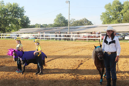The Miniature horse show drew a large audience as several contestants dressed their horses up as different characters. The miniature horse show had several categories and classes.