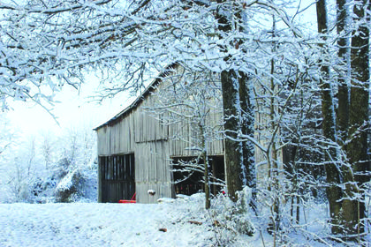 """Honorable mention """"Family barn in the snow"""" taken by Kelsey Higgins"""