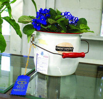 Sue Poteet took an old diaper pail and some African violets and made an award-winning display.