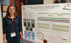"""<div class=""""source"""">File photo</div><div class=""""image-desc"""">Western Kentucky University biology student Millicent Ronkainen of Hodgenville pictured with a recent project at a biology conference</div><div class=""""buy-pic""""><a href=""""/photo_select/54443"""">Buy this photo</a></div>"""