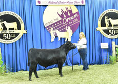 "<div class=""source"">Photo by Pearls Pics, on behalf of the American Angus Association.</div><div class=""image-desc"">R & K Fullback 107 won bred-and-owned bull class 1 at the 2018 National Junior Angus Show (NJAS) on July 10-13 in Madison, Wisoinson. Kalli Flanders of Buffalo owns the winning bull.</div><div class=""buy-pic""><a href=""/photo_select/60269"">Buy this photo</a></div>"