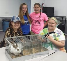 """<div class=""""source""""></div><div class=""""image-desc"""">Sara Duvall, Alexis Grimes, Kelsey Hornback and Michaela Rock attended a Rabbit Club meeting in August to learn how to tattoo rabbits. Ear tattoos are required for State Fair rabbit entries.</div><div class=""""buy-pic""""><a href=""""/photo_select/43121"""">Buy this photo</a></div>"""