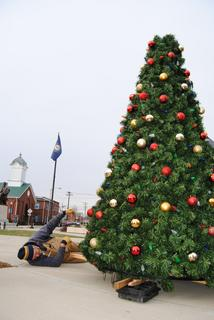 City employee Tim Robertson checks underneath the tree.