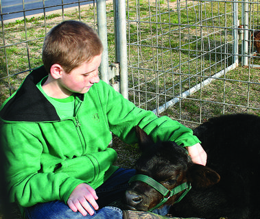 Stauge Jones cuddled with his 2-week-old Angus calf at Saturday's Expo. The petting zoo area, with goats and calves, was a popular spot for children. About 800 attended.