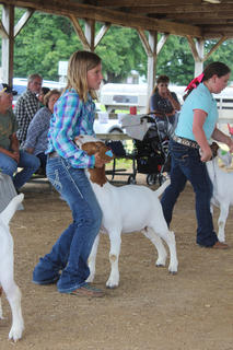 Kaylee Haycraft, a LaRue County 4-H member, displayed her goat during the LaRue County Open Goat Show.