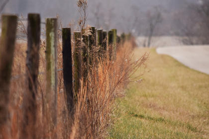 It had begun to snow when I turned onto Viers Road. I tried my best to capture the snowflakes with my camera, but they were just too small. However, I was pleased with the contrast of the fence against the dry grass.