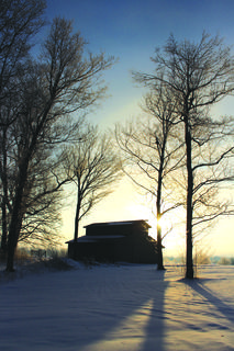 Story behind the shot:  Morning Stroll was taken at my residence on Miller Road.  When I woke up to the fresh snowfall, I couldn't resist getting outside with my camera and walking around our property. The barn in the photo is my daughter's horse barn. I use a Canon Rebel T5i, which I'm sure was on a basic setting due to wearing gloves.  My dad, William Beard, was the first person to truly introduce me to photography.  It was a little tougher then, considering we had to use film and understand how to use a camera manually, but he was always glad to help me.  My aunt, Dana Williams, was also a huge inspiration. She always had her amazing photos hanging in her home and I knew that I wanted to be able to do that some day.  Landscape has always been my favorite type of photography.  Nature and it's amazing changes that never fail to show us beauty in a world full of chaos.