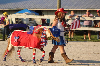 Several regional minature horse owners became creative as they entered their horses in the Miniature horse show at the fair.